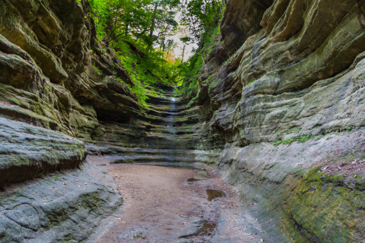 A short drive from Chicago and full of natural splendor, the formations at Starved Rock are unique for the sate and you'll often find yourself in awe of how time has formed them.