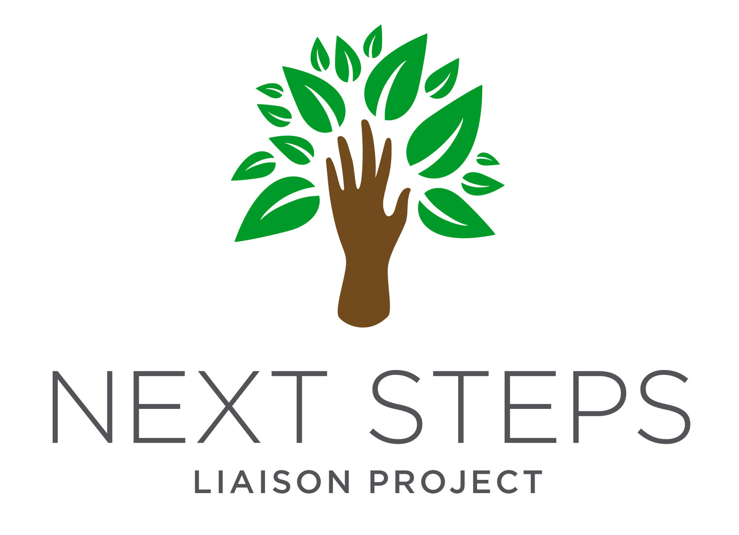 Next Steps Liaison Project