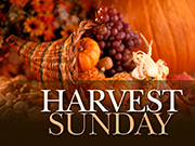Harvest Sunday_0-2.jpg