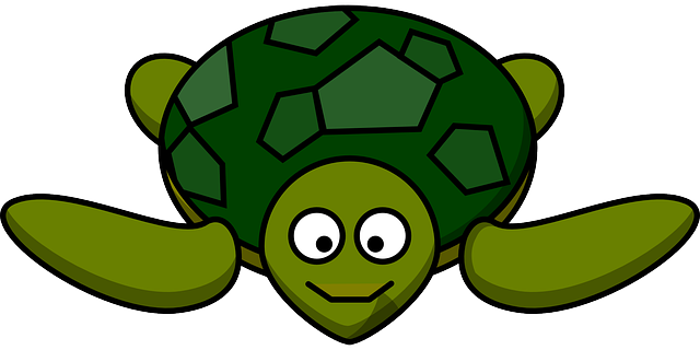 happy turtle.png