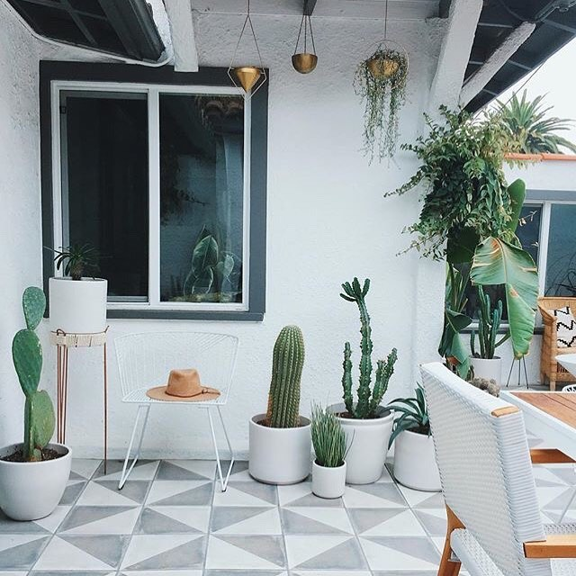 More beautiful outdoor vibes for you. 🌵 Dreaming of summer today. 🥶  Repost: @designlovefest