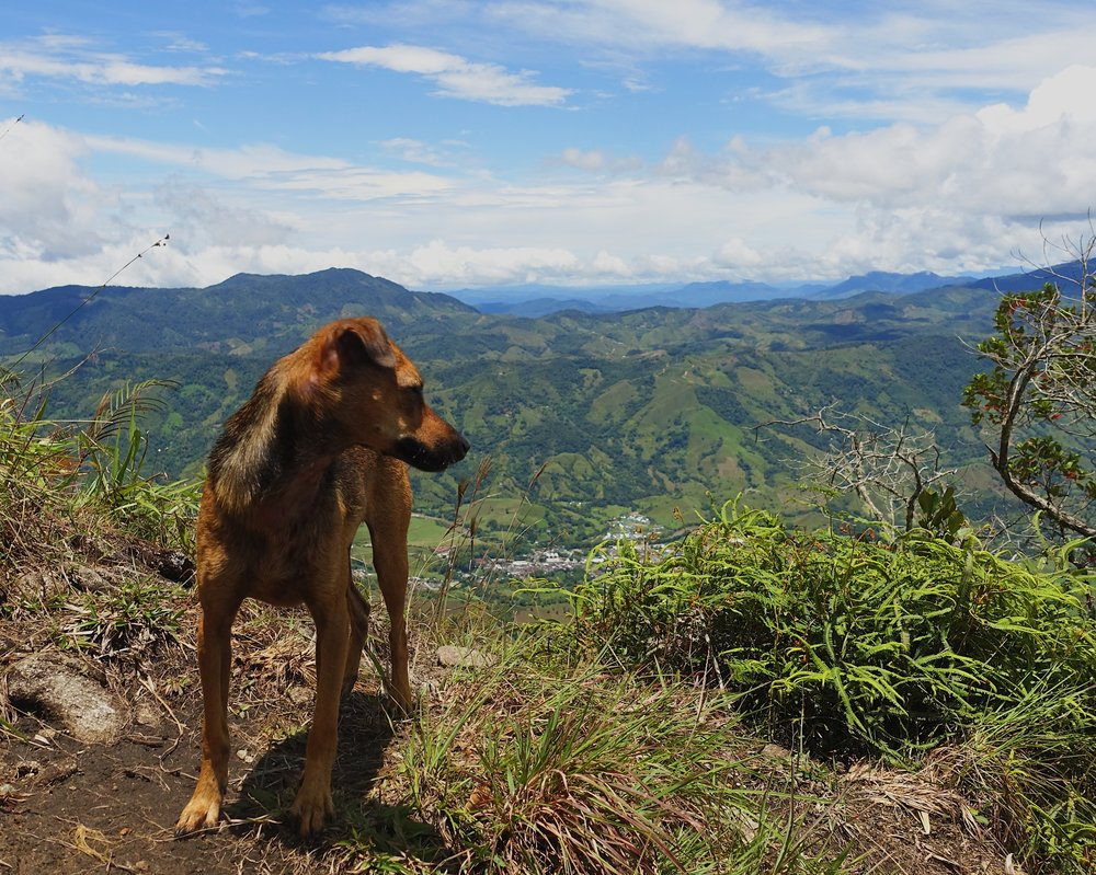 Dobby from atop Piedra del Tabor (Stone of Tabor) overlooking San Carlos
