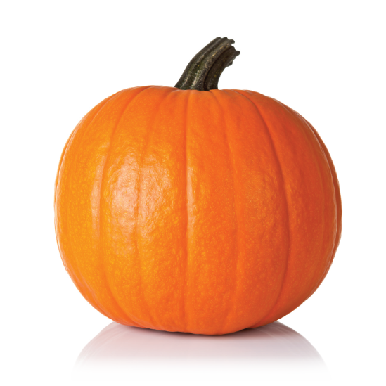 Don't forget to enter our Pumpkin Contest in the office this month! The two Practice Members who guess closest to the weight of the pumpkin on the ottoman in the reception area win a Fall gift basket!