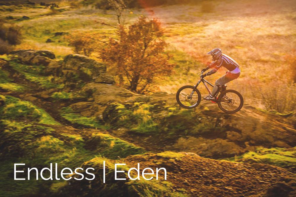 Endless Eden.png
