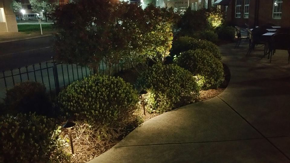 Chattanooga Commercial Landscape Lighting