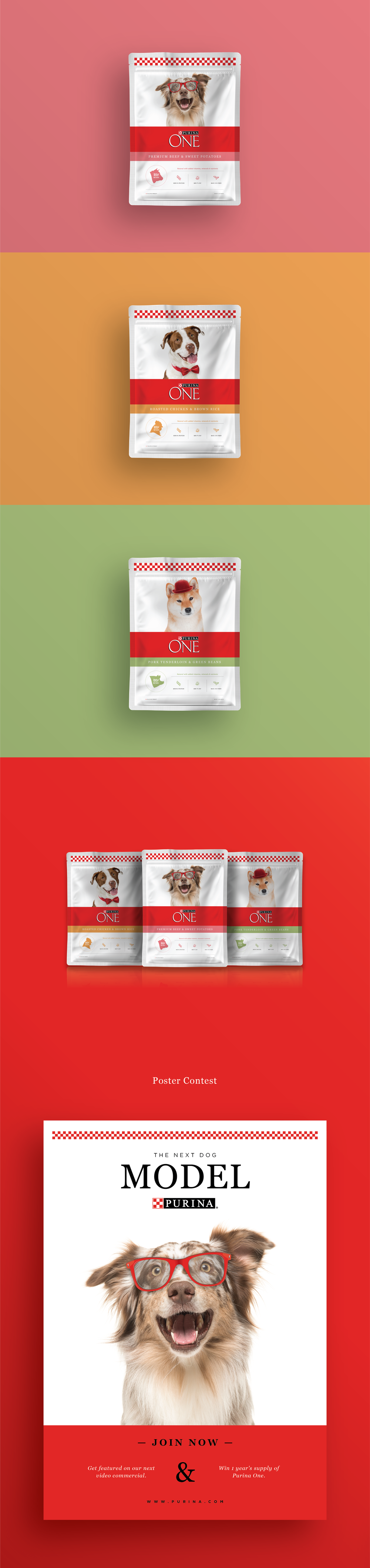 Purina Project-02.png