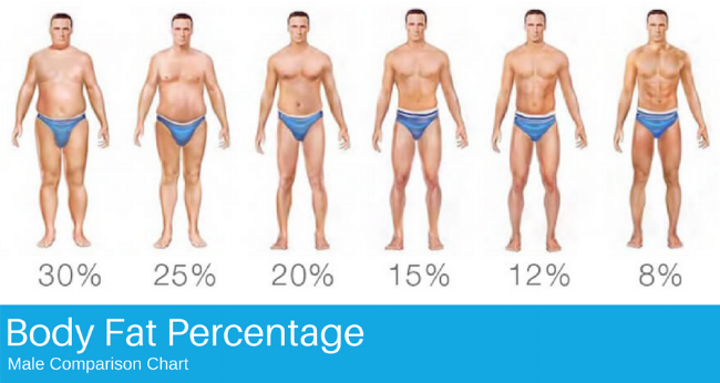 Body Fat Percentage.png