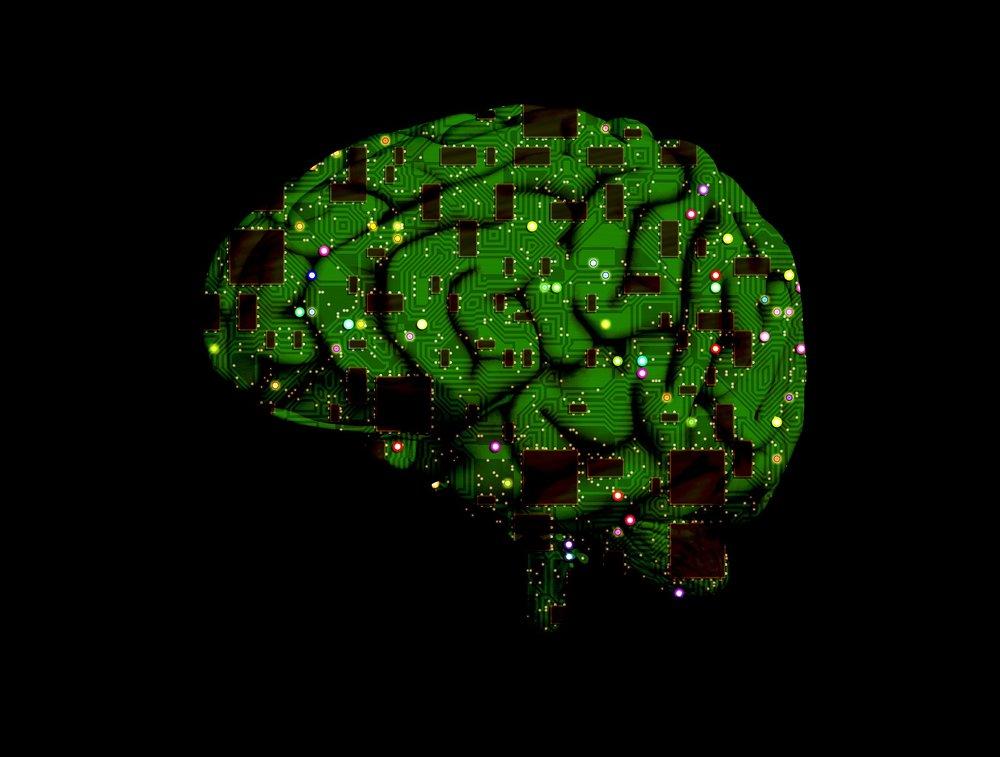 Boekestein - brain-1845944_1920.jpg