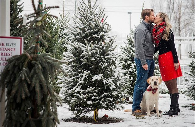 Do you watch the Hallmark channel during the Christmas season?  I sorta felt like I was in one of those movies this morning photographing these three in the snow! #rva #christmas #snow!
