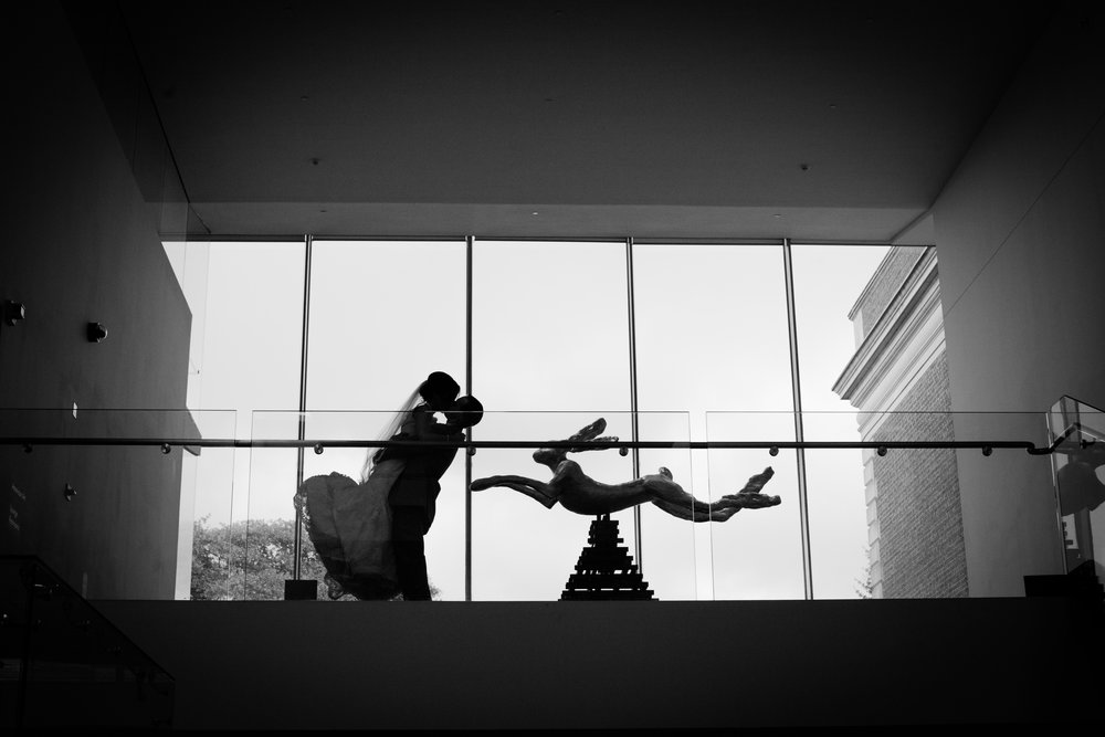 Richmond-Va-VMFA-Wedding-Photographer.jpg