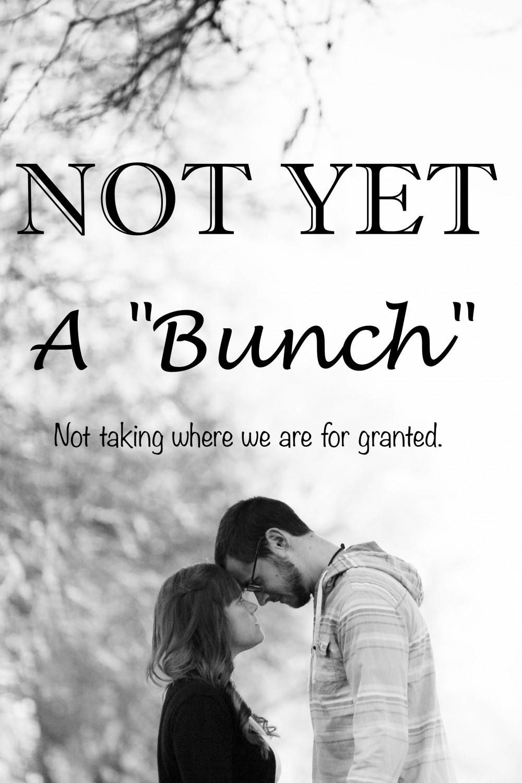 Not-Yet-A-Bunch-e1398354497113.jpg