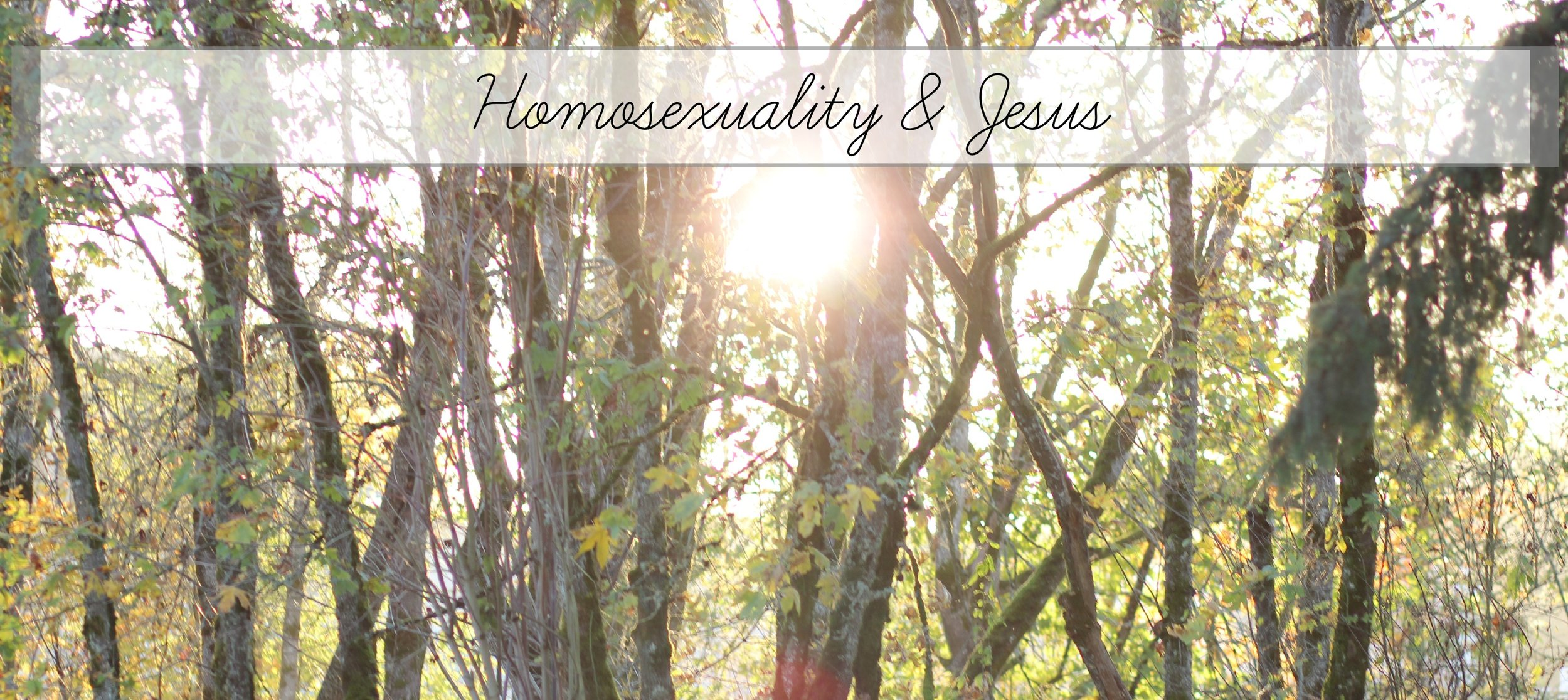 homosexuality and jesus