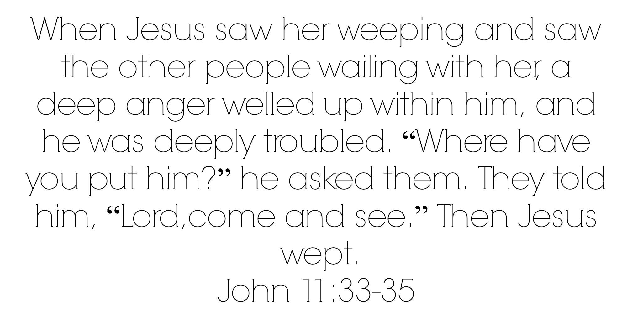 john 1133-35 jesus wept