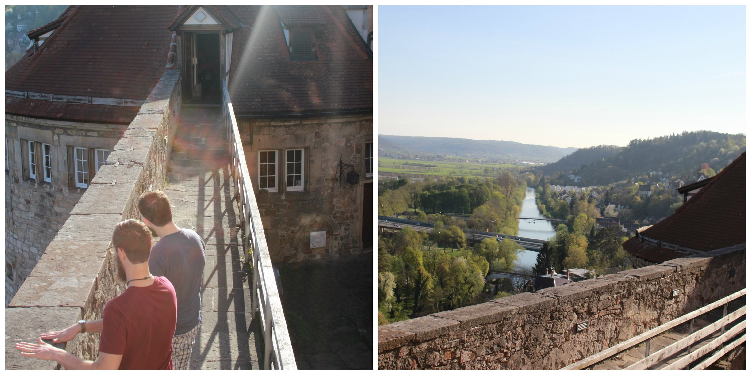 view from the Tubingen castle