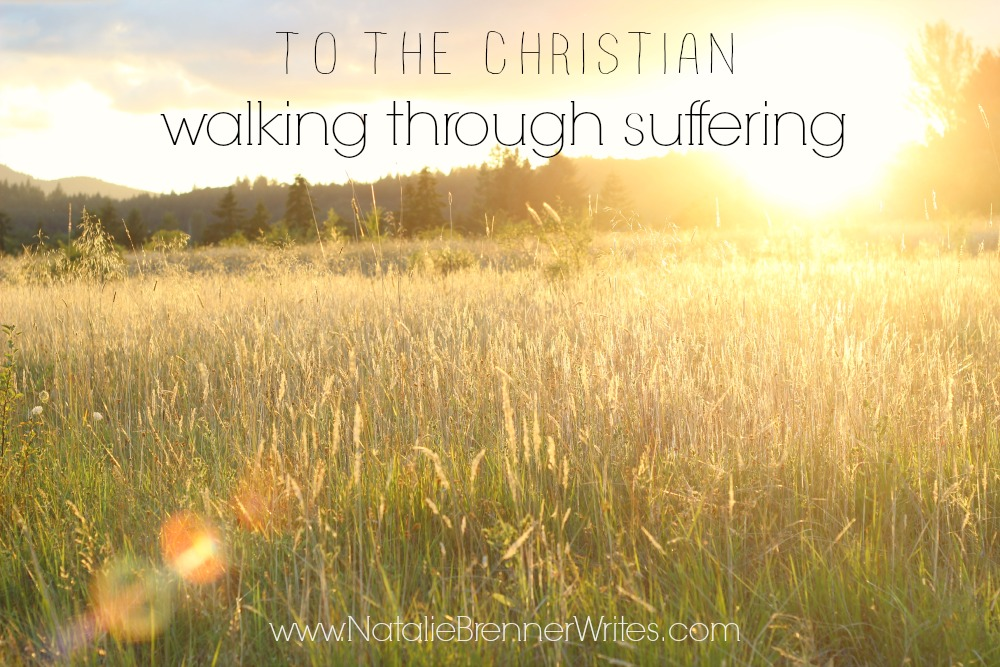 to the christian walking through suffering