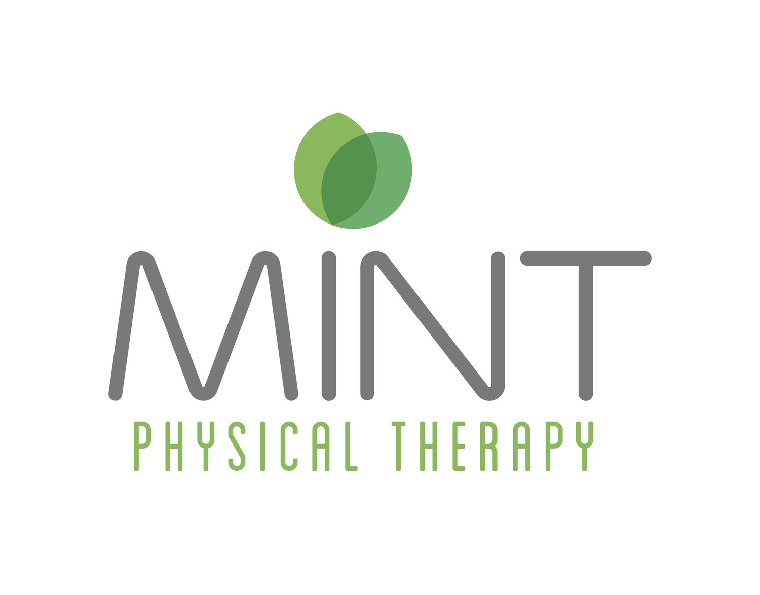 MINT Physical Therapy