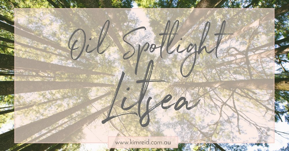 Oil Spotlight - Litsea
