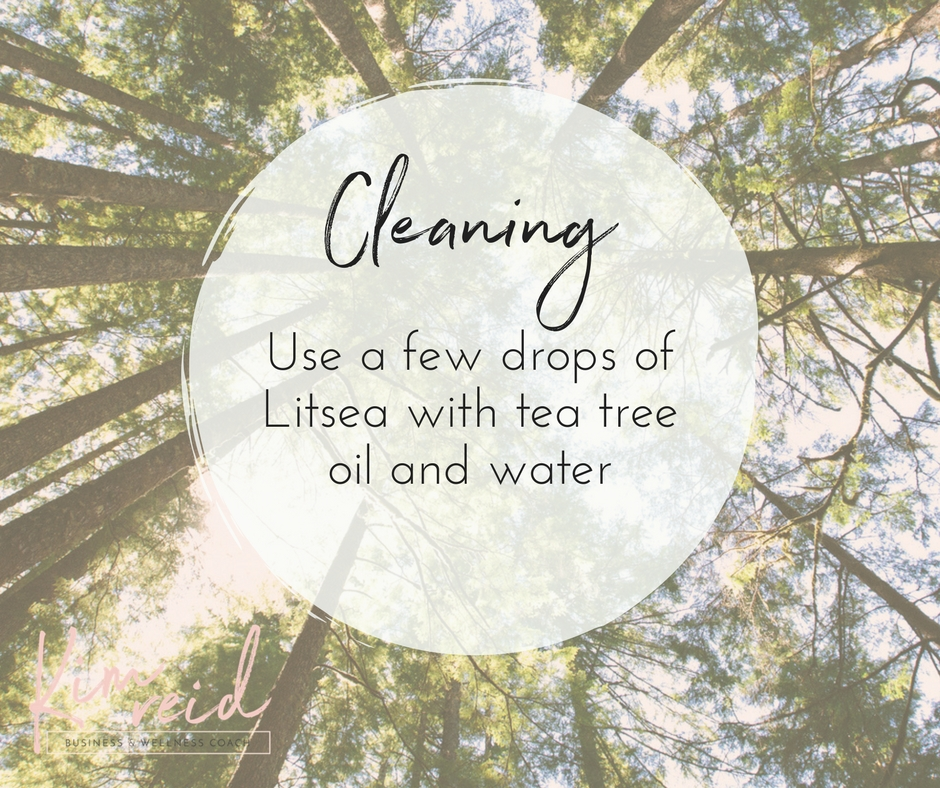 Cleaning - Litsea
