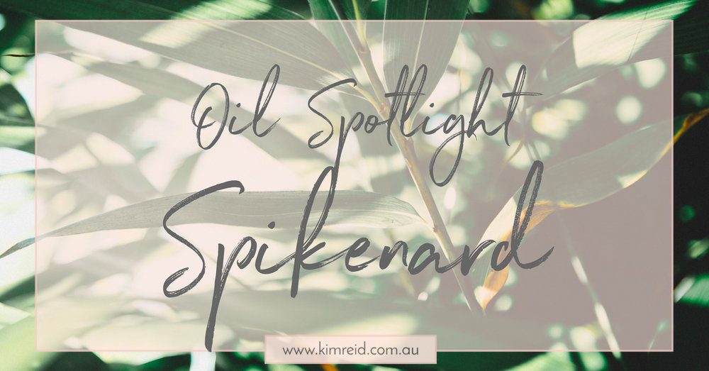 Oil Spotlight - Spikenard