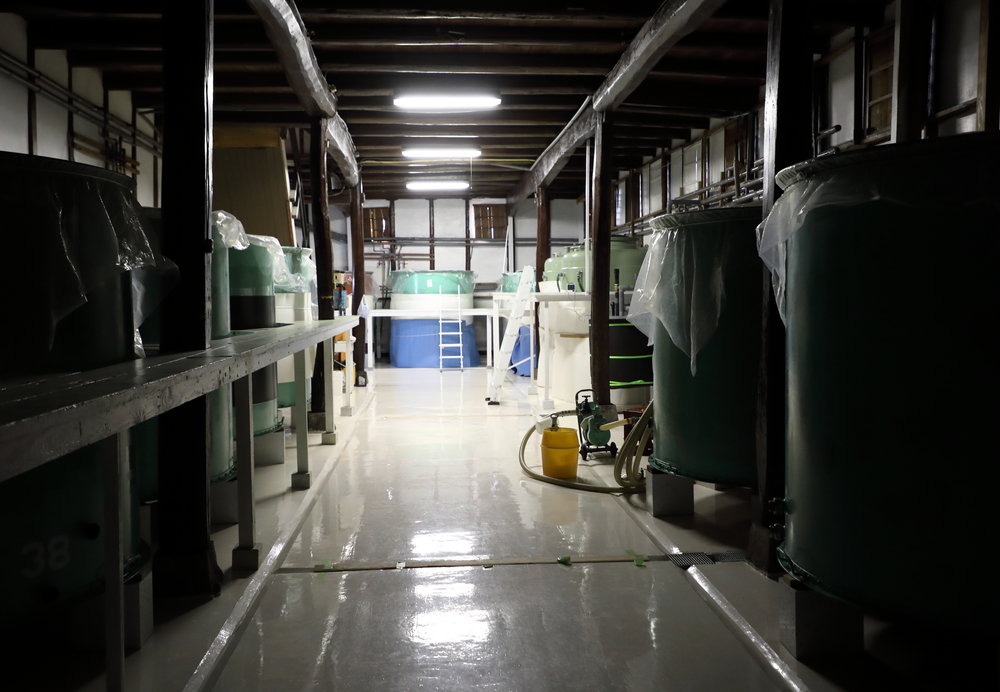 The  fermentation room where the sake acquires its nuanced character over the long cold winter months.