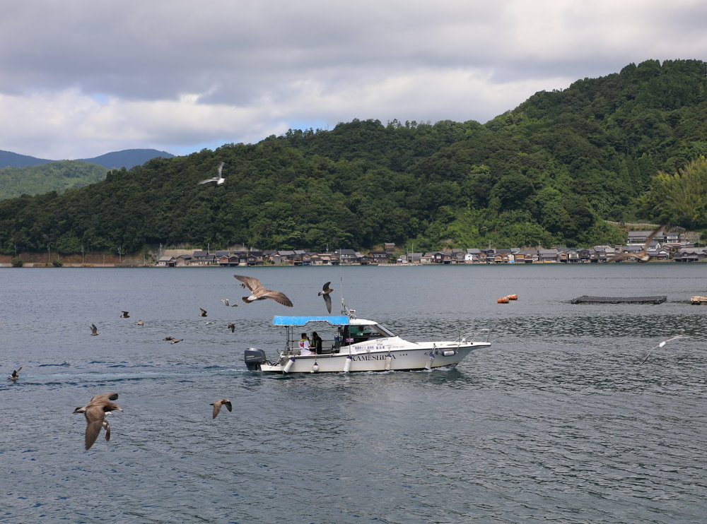 Kuraya's boat tours and fishing excursions are a great way to experience the bay.