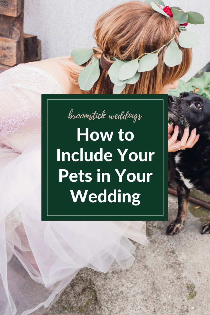 How to Include Your Pets in Your wedding