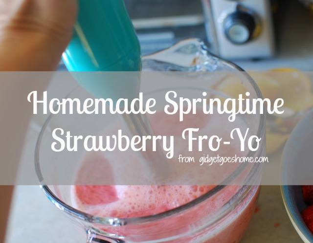 homemade strawberry fro-yo