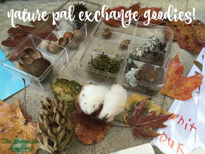 nature pal exchange goodies