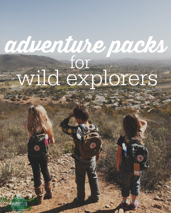 adventure packs for wild explorers