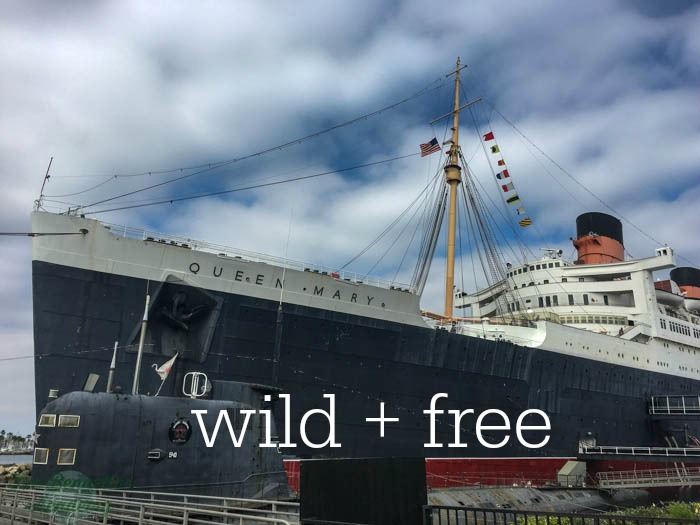 wild + free conference