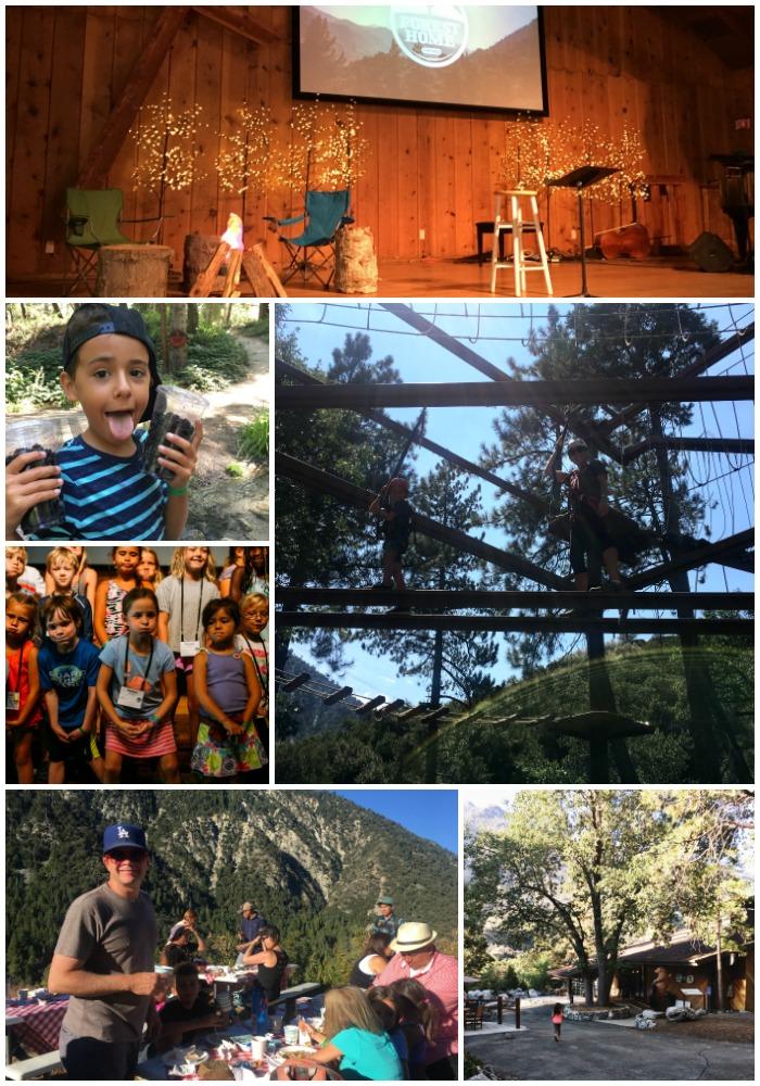 foho Collage 2.jpg