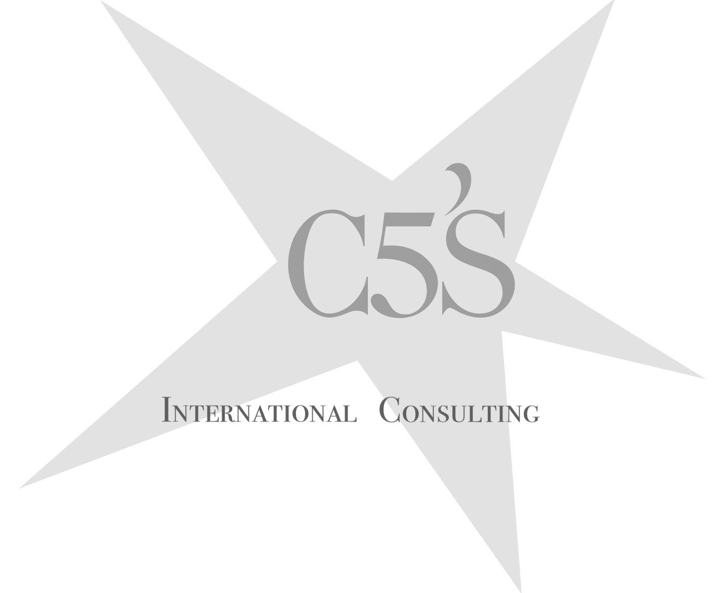 C5S International Consulting
