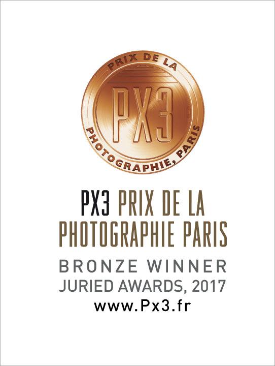 PX3-2017-Bronze.jpg