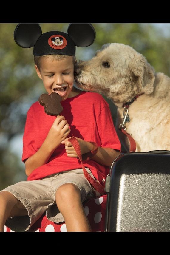 disney dog.jpg