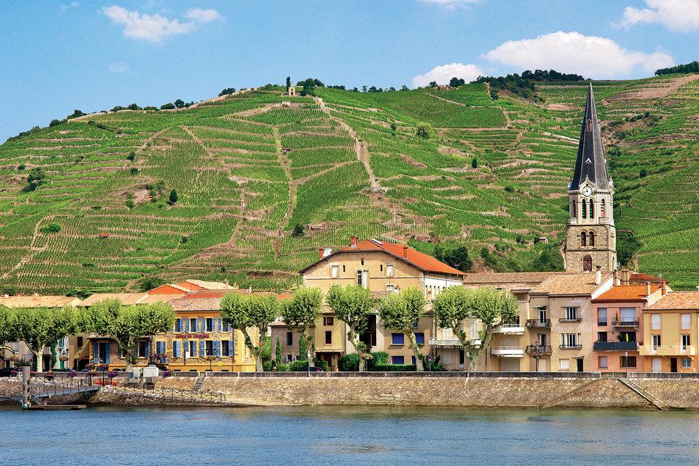 WineRegions_TheRhone_FRANCE_Cote-du-Rhone_ss_118904242.jpg