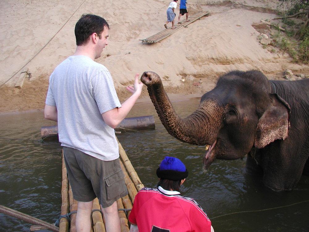 Feeding the elephants. (1).jpg