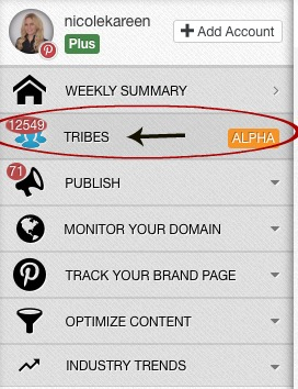 In the Tailwind dashboard, notice the TRIBES feature