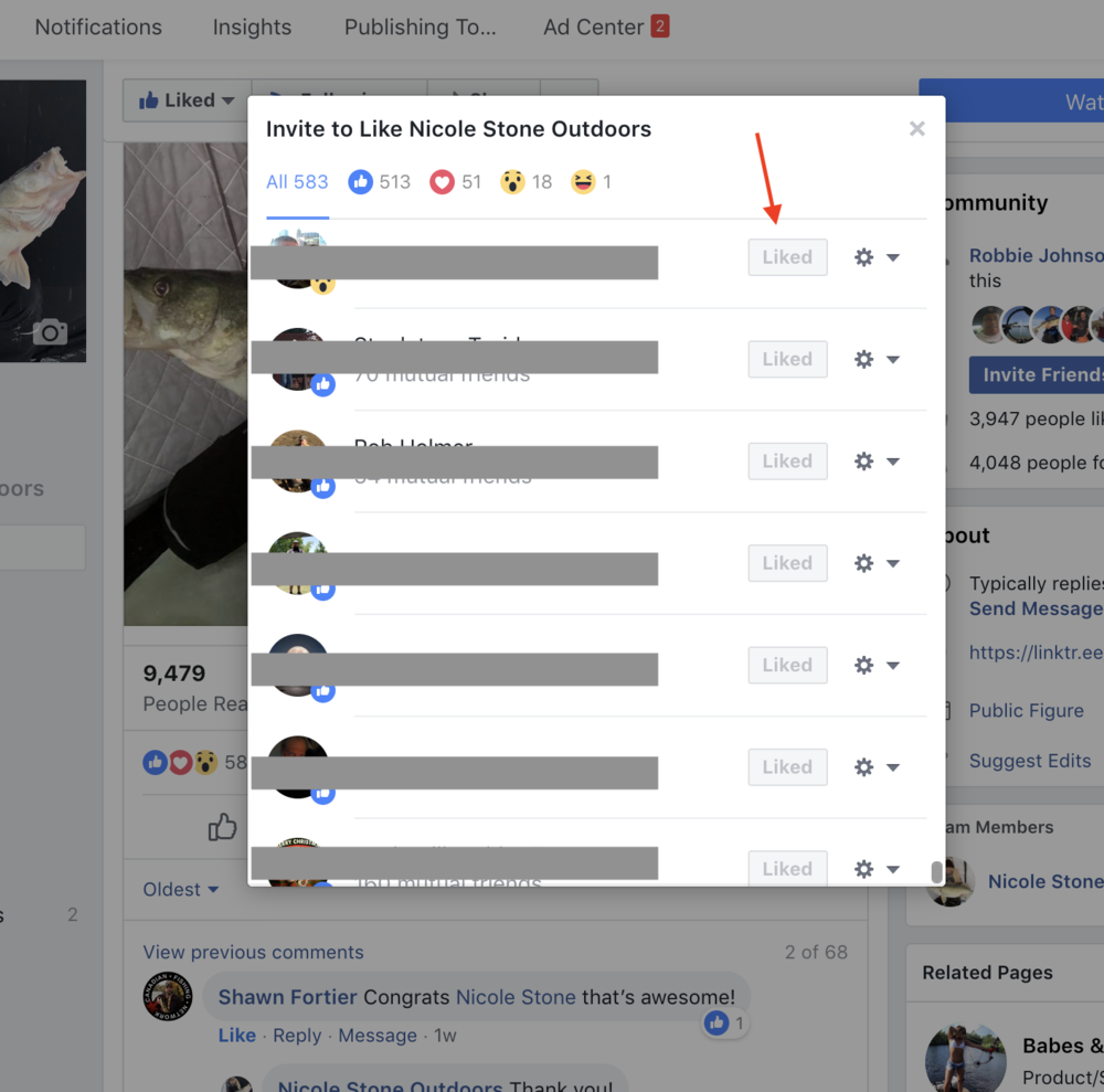 """When you look at who has """"liked"""" your post you can also have them like your page."""