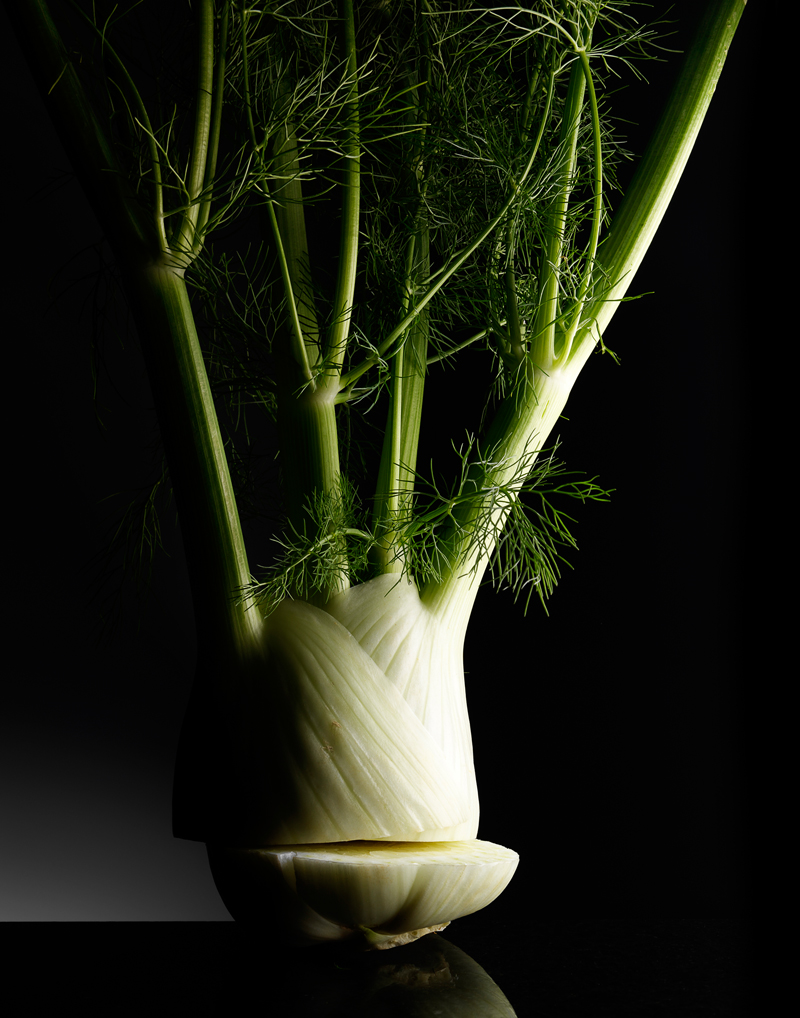 fennel_001crp_RS.jpg