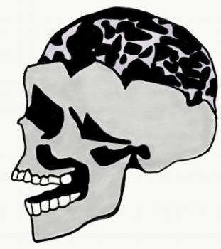 The Bicameral Mind: How the Mind Listens and Speaks   By Jordan Springer