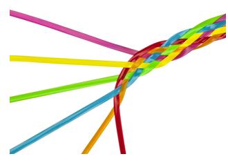 Traçabilité et transparence des supply-chains - Responsable stratégie produit de la première solution en mode SaaS de gestion des spécifications de produits vendus sous marques de distributeurs (alimentaire, Pet Food, HPH, cosmétique, bazar). –Trace One 2001/2016Responsable de la stratégie produit de Transparency One solution de «supply chain mapping » permettant l'analyse des risques de la fourche à la fourchette –Trace One 2001/2016Mise en place de la première filière certifiée de volailles françaises nourries sans farines animales- Groupe Bourgoin SA 1995 / 2001Mise en place des premières filières de volailles française non label rouge tracée de l'éleveur à la barquette - Groupe Bourgoin SA 1995 / 2001Gestion des autorisations administratives de 300 fromageries fermières (zone AOC Crottin de Chavignol)- DSV 18 1986-1990