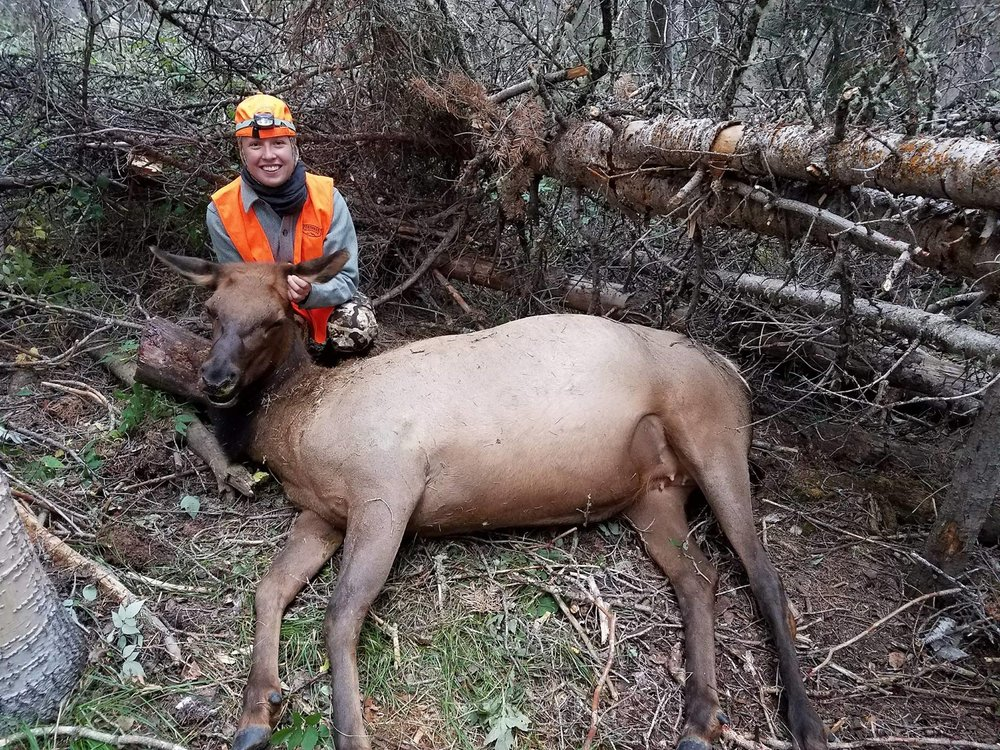 Rose's first elk. -