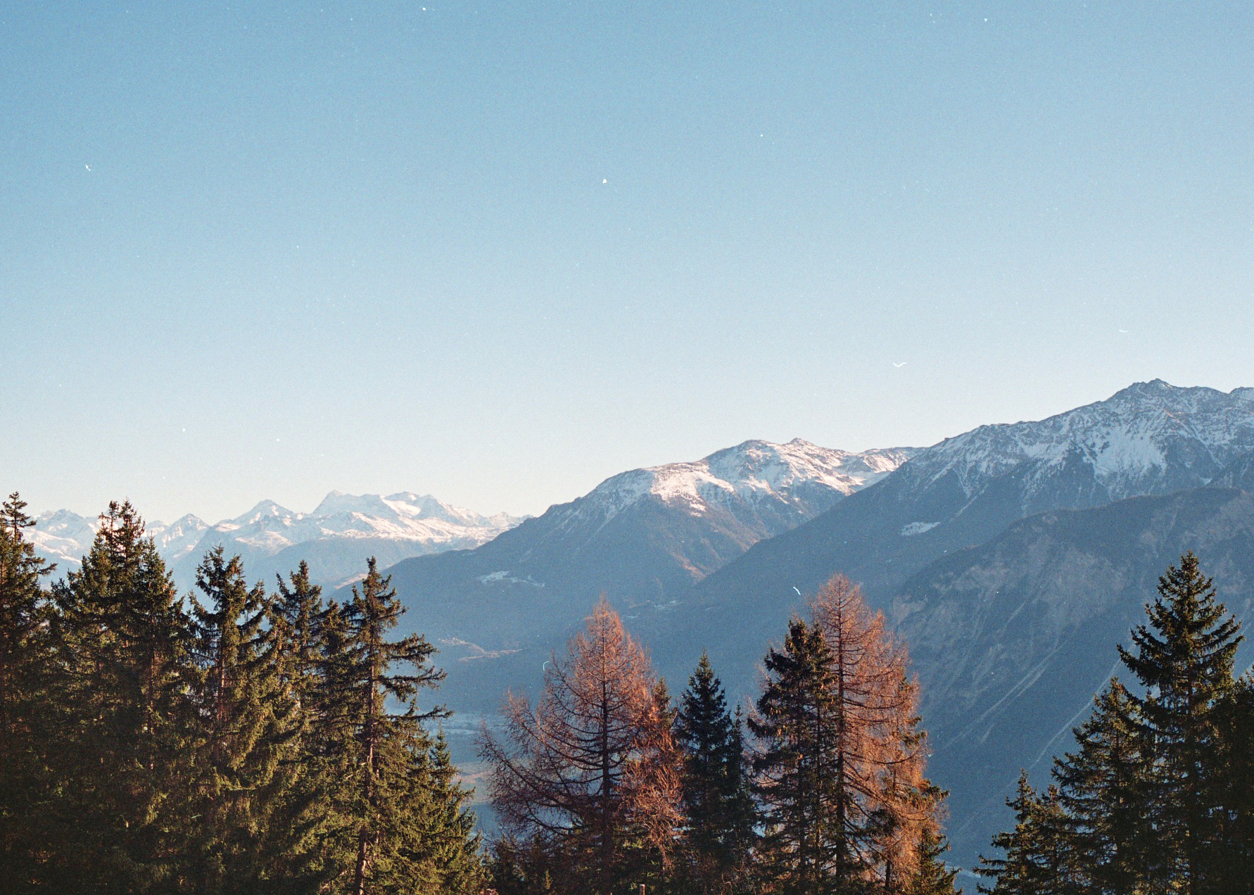 Swiss Alps by Olivia Bossert