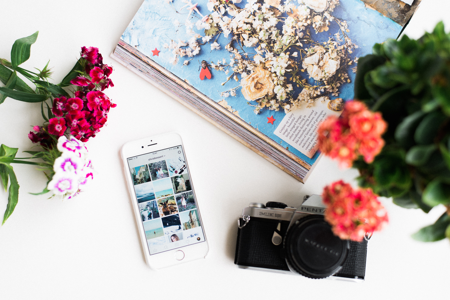 10 Instagram Accounts To Get You Inspired - oliviablogs.com
