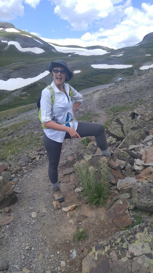 Jennifer Ackerfield   A prickly puzzle: Phylogeny and evolution of the  Carduus - Cirsium  group (Compositae)
