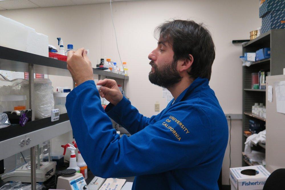 Ricardo de Oliveira Perdiz   Species delimitation and phylogeography of the  Protium aracouchini  (Aubl.) Marchand species complex