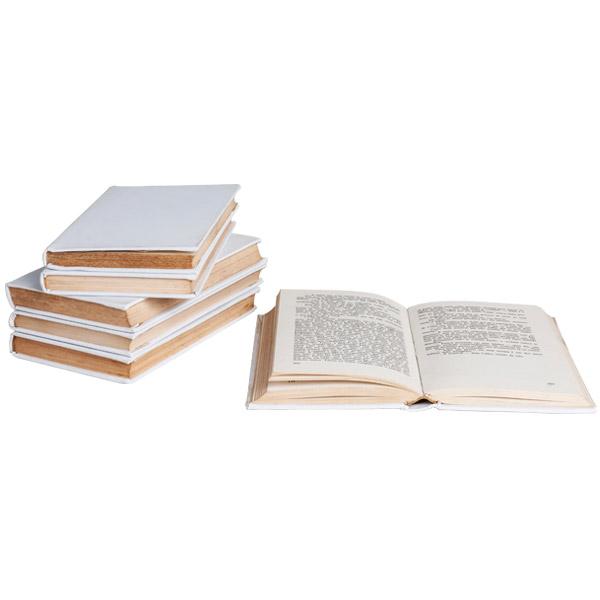 ADE032-loke-decore-aderecos-livro-branco.jpg