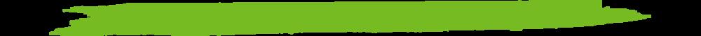 green slash Divider.png