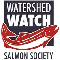 ww-salmon-1.png