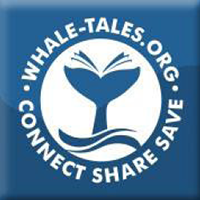 whale-tales-1.png